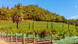 Hotels in Saint Helena