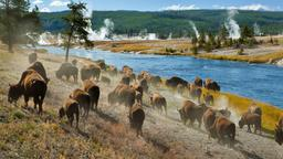 Hotels in Yellowstone Nationalpark